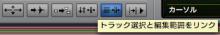 Track Edit Link
